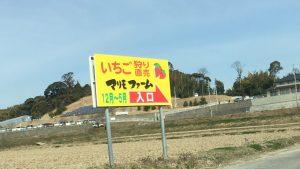 【名古屋採草莓いちご狩り】45分鐘現採現吃吃到飽